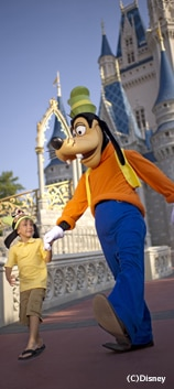 Magic Your Way: Disney theme park tickets